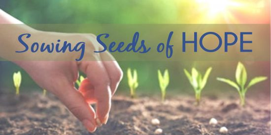 sowing seeds of hope web graphic